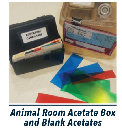 Picture of animal room acetate box with multi-colored blank acetates