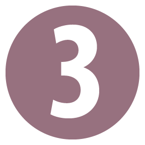 plum number three icon