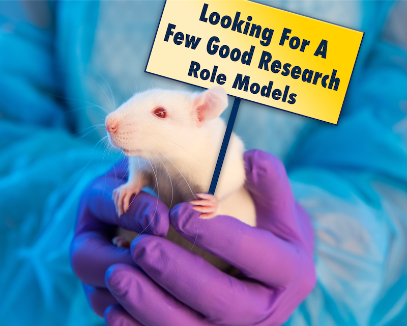 Rat photo with Looking for a Few Good Research Role Models sign