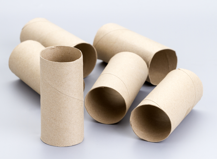 Donations Use Of Toilet Paper Rolls And Other Cardboard